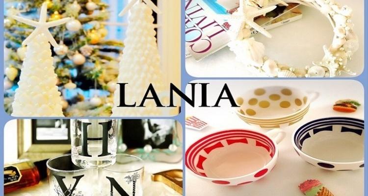 LANIAの写真