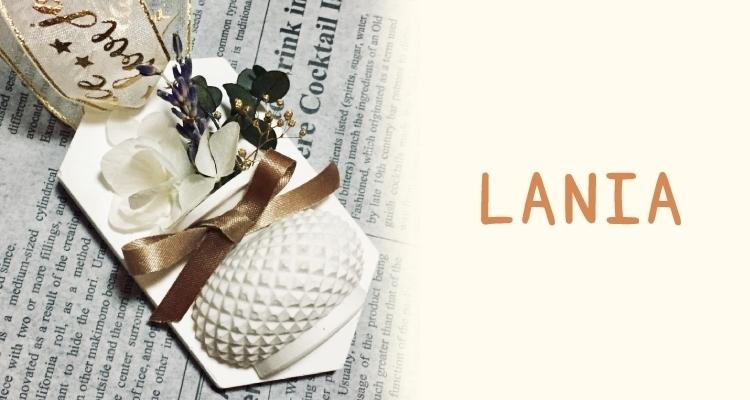 LANIAの写真9