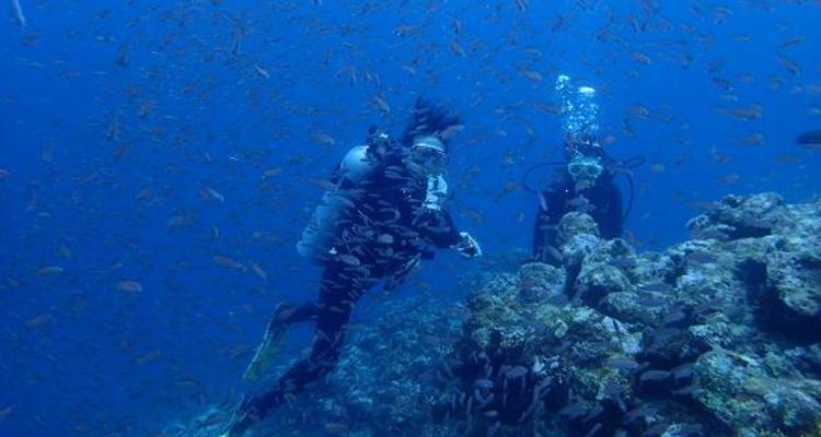 サザンダイブ石垣島の写真5